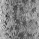 Textured Glass – Mayflower
